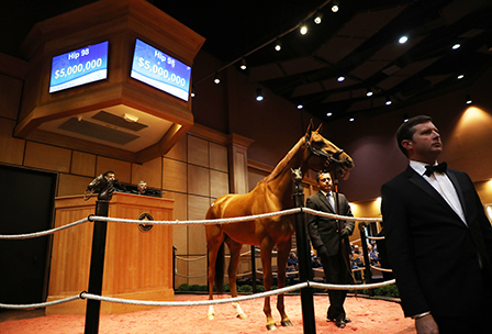 fasig tipton november sale blue prize