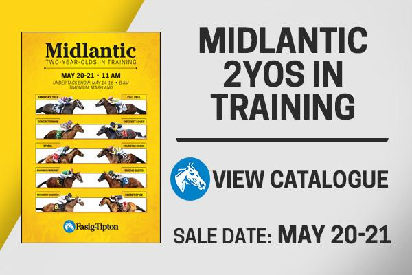 midlantic two-year-olds in training sale view catalogue